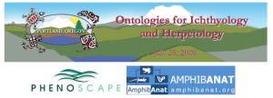 ASIH 2009 workshop banner